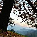 Autumn View by Bruno Santoro