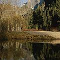 Autumn View Of The Park With Half Dome by Marc Moritsch