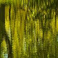 Autumn Water Reflection Abstract IIi by Valerie Rosen