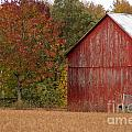Autumnal Barn by Ginger Harris