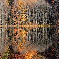 Autumns Art by Karol Livote