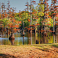 Autumn's Beauty And Reflection by Ester  Rogers