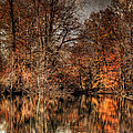 Autumn's End by Paul Ward