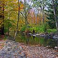 Autumn's Splendor by Kay Novy