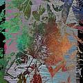 Autumns Splendor by Tim Allen
