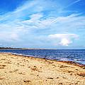 Avon Beach At Mudeford In Dorset by Chris Day