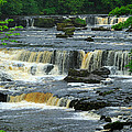 Aysgarth Falls Wensleydale by Louise Heusinkveld