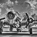 B-17 by Williams-Cairns Photography LLC