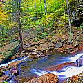 B Reynolds Falls Panorama by Rich Walter