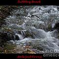 Babbling Brook by Attila Jacob Ferenczi