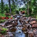 Babbling Brook by Debbi Granruth