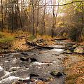 Babbling Brook In Autumn by Cathy Kovarik