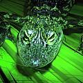 Baby Alligator by Denise Keegan Frawley