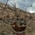 Baby Buggy In Wilderness by Jill Battaglia