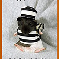 Baby Guinea Pig Trick Or Treat by Renee Trenholm