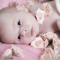 Baby In Bed Of Roses by Waldek Dabrowski
