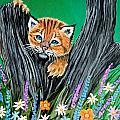 Baby Lynx by Nick Gustafson