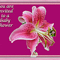 Baby Shower Invitation - Pink Stargazer Lily by Mother Nature