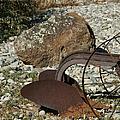 Back Half Of Old Plow by Ernie Echols