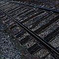 Back Trackin by Travis Crockart