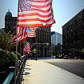 Backlit Flag by Anita Burgermeister