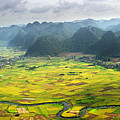 Bacson Valley by By Hoang Hai Thinh