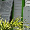 Bahama Conch House by Jan Prewett