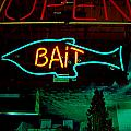 Bait by Kathleen Grace
