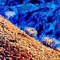 Baja California Coast - Sea Of Cortez by Russ Harris