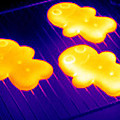 Baked Gingerbread, Thermogram by Tony Mcconnell