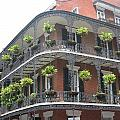 Balcony In New Orleans by Mily Iriarte