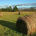 Bales by Jeff Galbraith