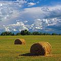 Bales Of Hay by Elena Filatova