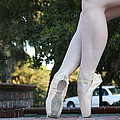 Ballet Legs by Jan Bennicoff
