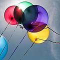 Balloons by Tammy Lee Bradley
