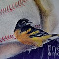 Baltimore Orioles by AE Hansen