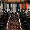Baltimore Stairway by Karen Harrison