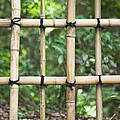 Bamboo Fence Detail Meiji Jingu Shrine by Bryan Mullennix