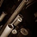 Bamboo Poles 1 by Xueling Zou