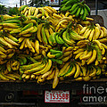 Bananas For Sale  by Elaine Manley
