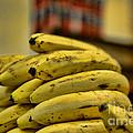 Bananas by Paul Ward