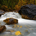 Banff - Autumn Creek by Terry Elniski