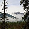 Banff View by Dennis Hedberg