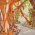 Banyan In The Afternoon by Terry Arroyo Mulrooney