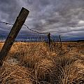 Barbed Wire Fence Posts With Dark Sky by Dan Jurak