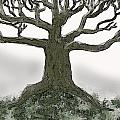 Bare Branches I by Debbie Portwood