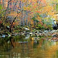 Barkshed Creek Toned by Kevin Pugh
