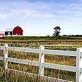 Barn And Fence by Cheryl Cencich