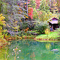 Barn And Pond In The Fall by Duane McCullough