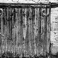 Barn Door by Georgia Fowler